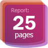 Report: 25 pages